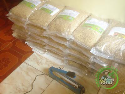 Petani Karawang, Jabar   Pembeli Benih Padi TRISAKTI 75 HST Panen  sebanyak 30 Kg atau 6 Bungkus