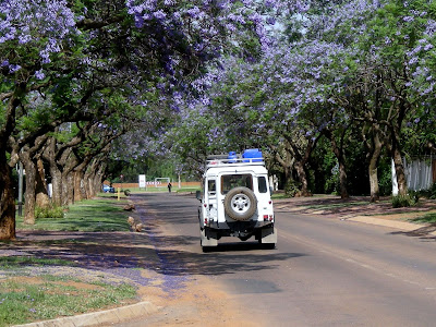 Land Rover, Pretoria, South Africa, Jacaranda