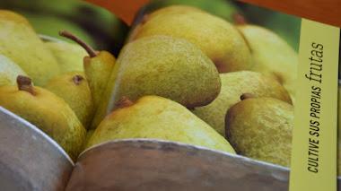 Cultivar alimentos en espacios reducidos, RHS. Un libro muy fresco y un sorteo