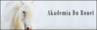 http://akademiadurouet.blogspot.com/