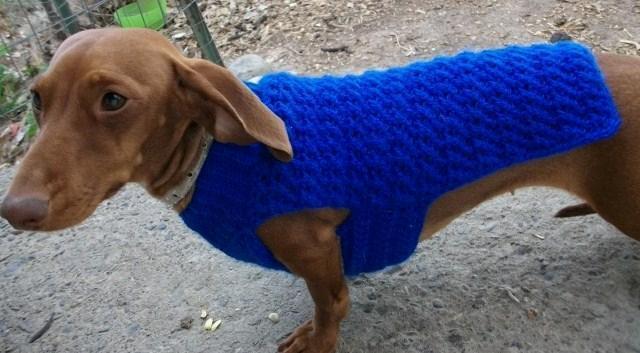 Copper Llama Studio Dog Sweater Crochet Patterns