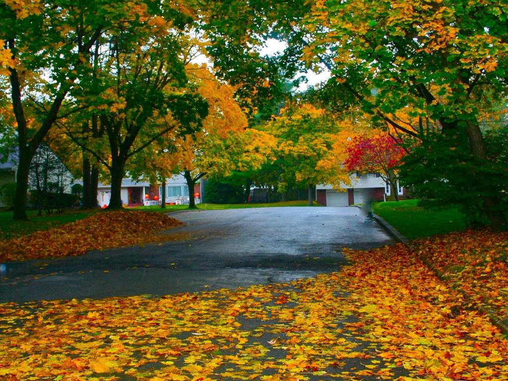 Rainy Fall Day Wallpaper Beautiful Roads Full Hd Wallpaper Nfs
