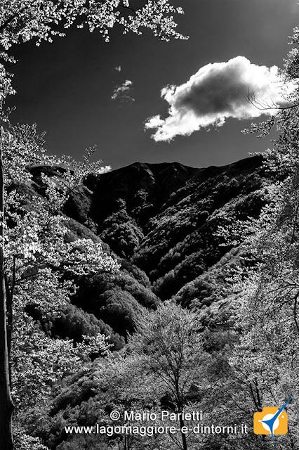 Panorama in bianco e nero da Viasco