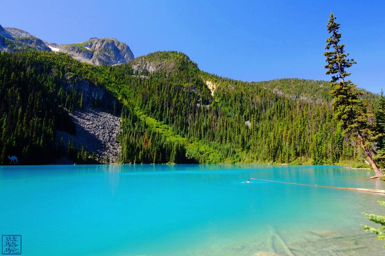 Le Chameau Bleu - Blog Voyage Colombie Britannique Canada - Randonnée Joffre Lake Trail Canada - Provincial Park