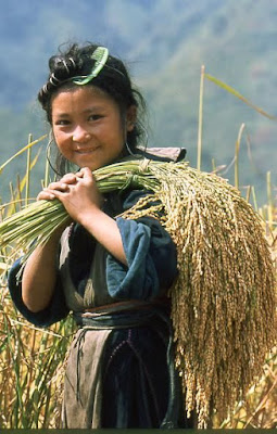 The lives of the children upland in Sapa