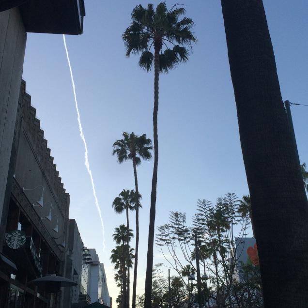 50 Days of No Grey - Santa Monica