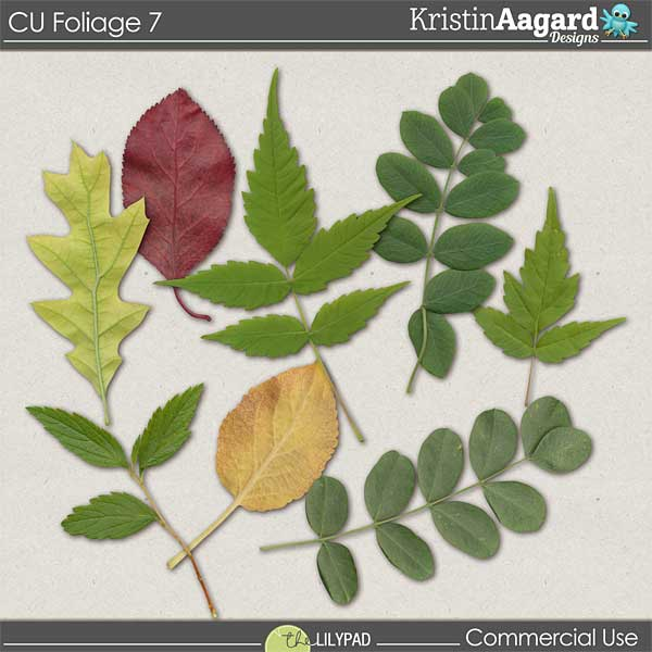 http://the-lilypad.com/store/digital-scrapbooking-cu-foliage-7.html