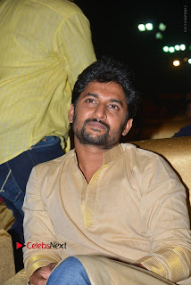 Nenu Local Audio Launch Stills  0055.JPG