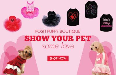 cute dog clothes