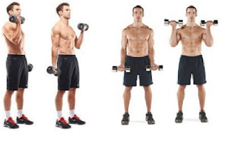 Program Latihan Fitnes bicep curl