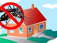 7 Cara Mengusir Nyamuk Agar Pergi Jauh Dari Rumah