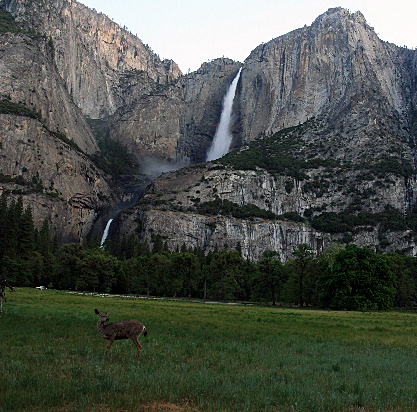 Globetrotting A To Z: Yosemite