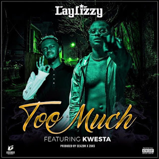 LayLizzy - Too Much (feat. Kwesta)
