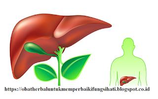 http://obatherbaluntukmemperbaikifungsihati.blogspot.com/2016/12/manfaat-cuka-sari-apel-untuk-detox.html