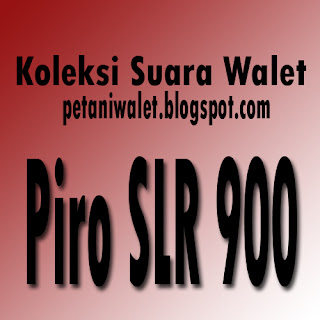 Download Suara Walet Piro SLR900-Caling