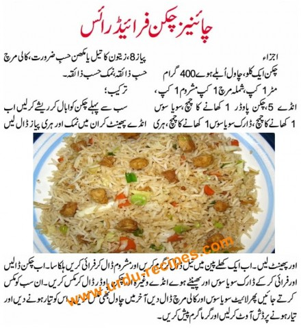 World Recipe Book Chinese Fried Rice Recipe In Urdu Pakistani Food