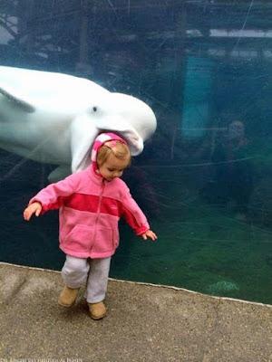 Witziges Kinder Bild am Aquarium lustig