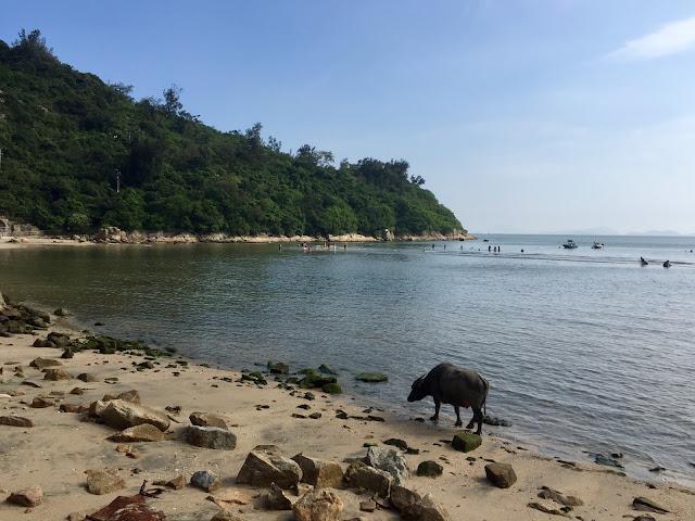 Pui O beach, Lantau Island, Hong Kong