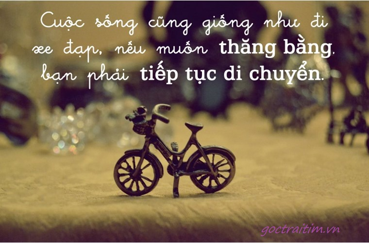 Image result for stt hay về cuộc sống.