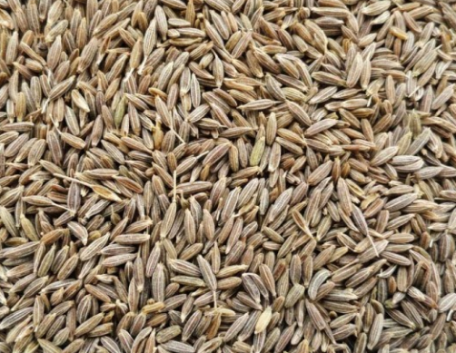 Health Benefits of Cumin seeds / Jeera