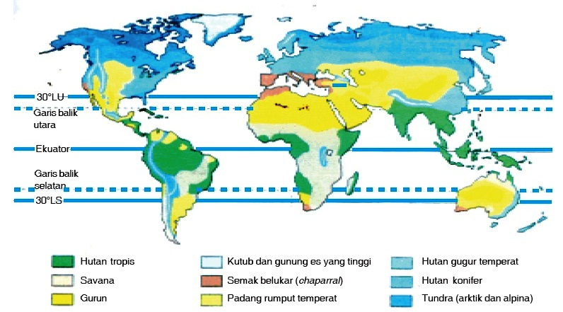geografi lingkungan Lingkungan Makhluk Hidup