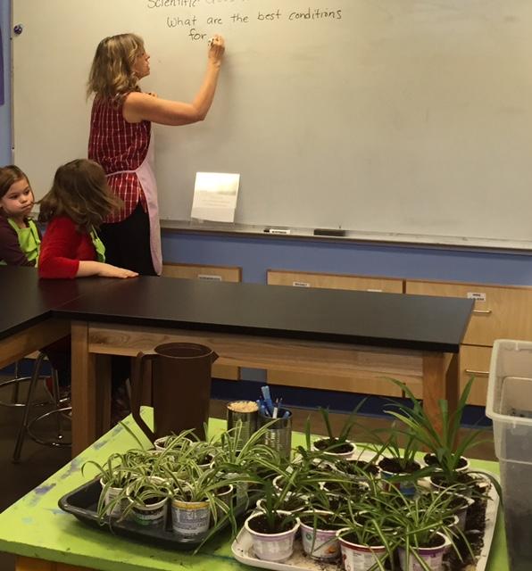 K-6 STEM Innovation Lab Woodstock Elementary School