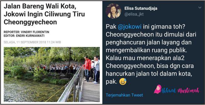 Berharap Ciliwung Sebersih Cheonggeyecheon Korea, Jokowi Malah Diskak Elisa Sutanudjaja