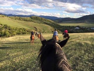 riitta reissaa, Georgia, Horsexplore, maastoratsastus