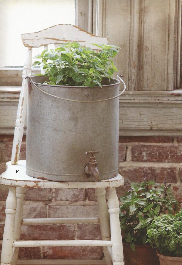 Farmhouse Musings Galvanized Water Bucket Planter