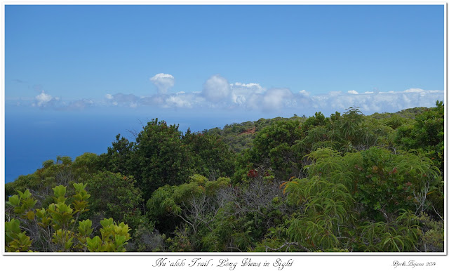 Nu'alolo Trail: Long Views in Sight