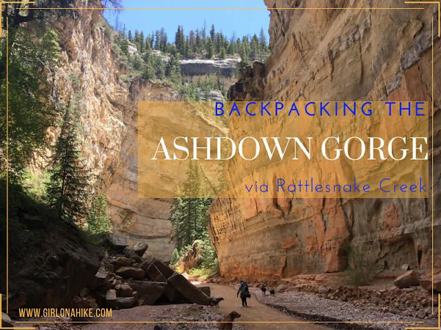 Backpacking the Ashdown Gorge via Rattlesnake Creek