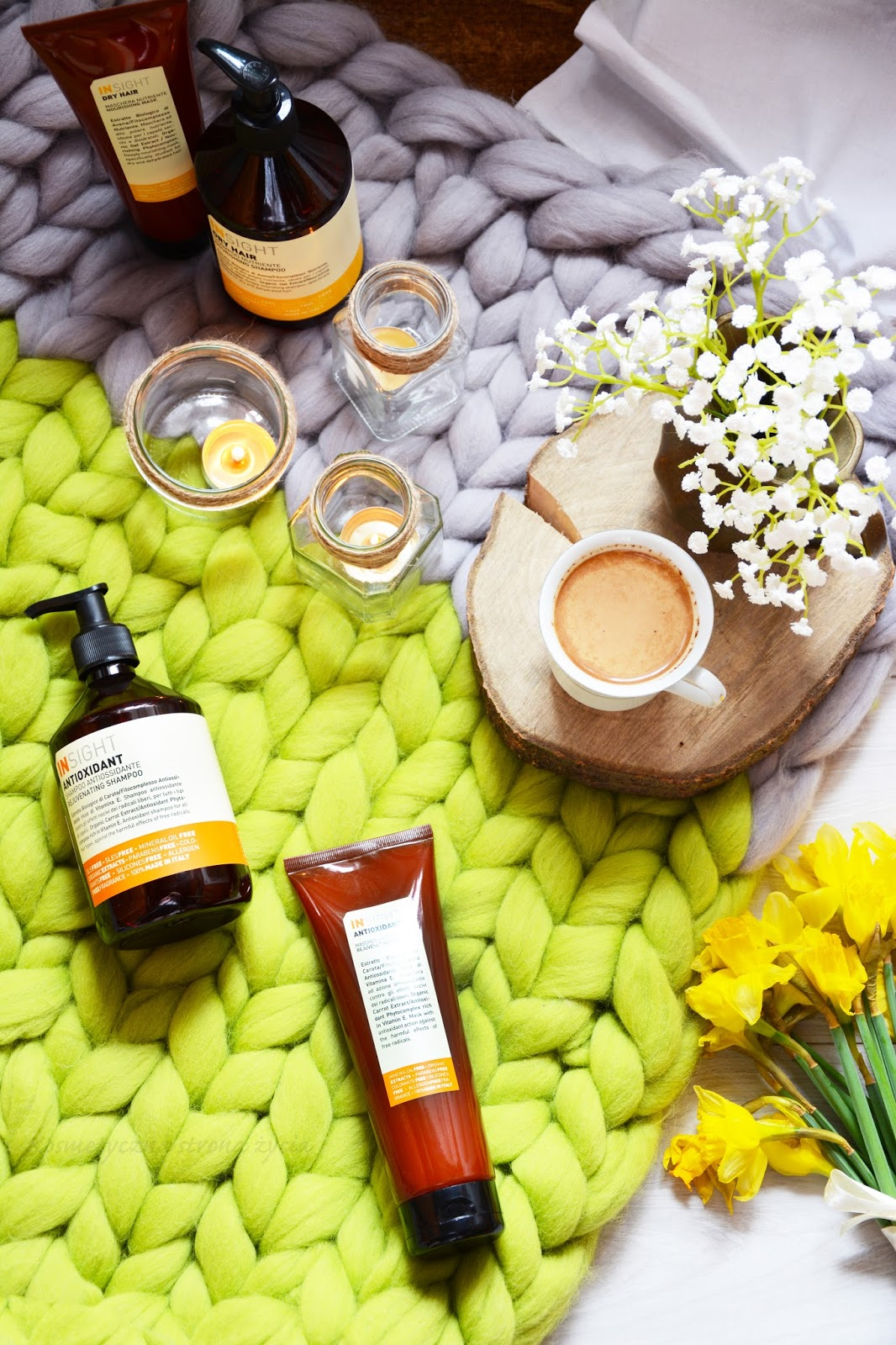 Insight Dry Hair Antioxidant szampon maska organicznewlosy