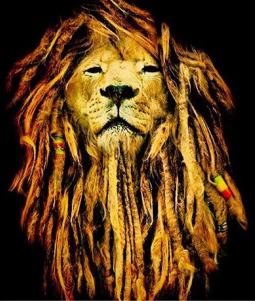 Óculos De Sol Dragon Domo Rasta Bronze - Surf Alive - R ...  Rastafari Alive