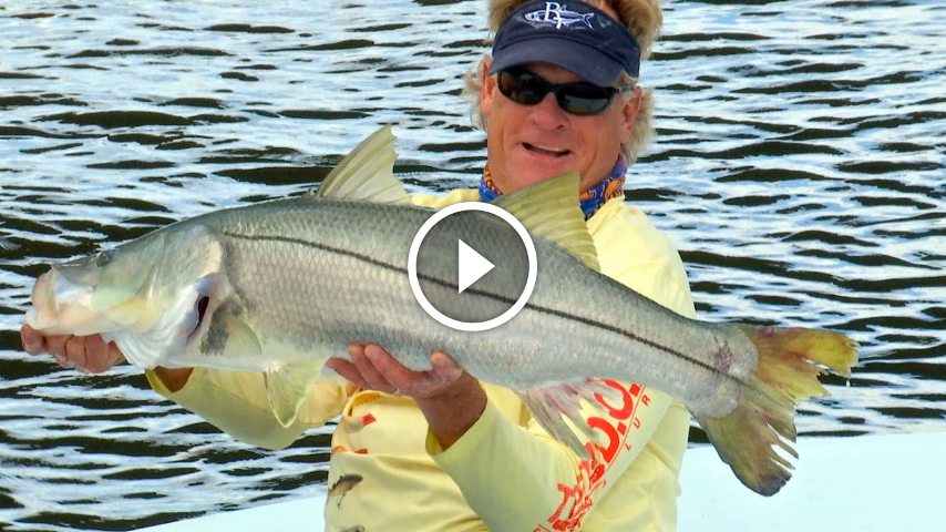 Swamp thing monster snook fishing in stuart florida how for Snook fishing lures