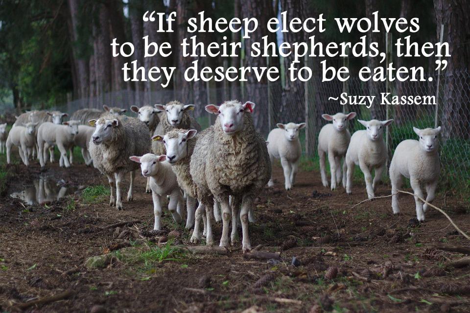 Politicians quote
