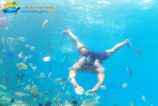spot snorkeling karimunjawa