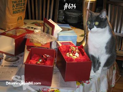 Cat World Domination Day Foto Frenzy