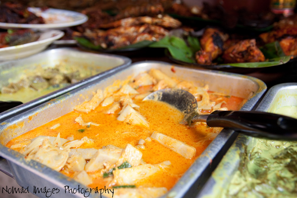 chicken curry malaysia food style