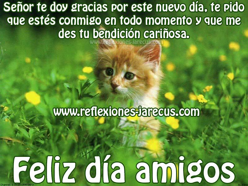 Señor te doy gracias por este nuevo día, te pido que estés conmigo en todo momentos y que me des tu bendición cariñosa. Feliz día amigos