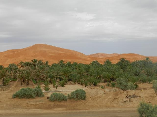 erg chebbi sahara marocco