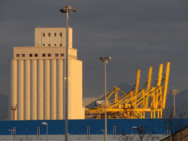 Silos Ardenza, container cranes, port of Livorno
