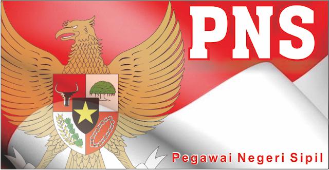 Hal-hal Penting tentang PNS yang Perlu Anda Tahu (1)