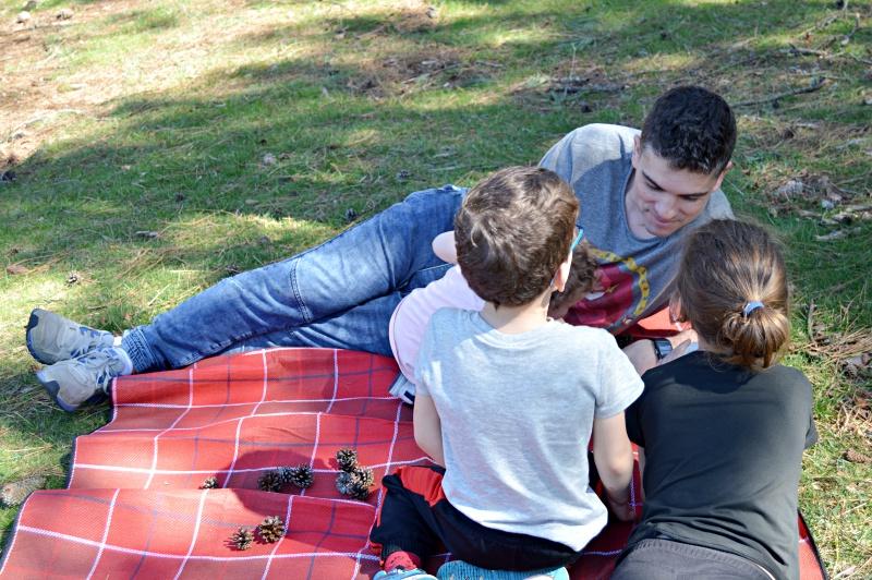 dados storyteller tiger juegos infantiles