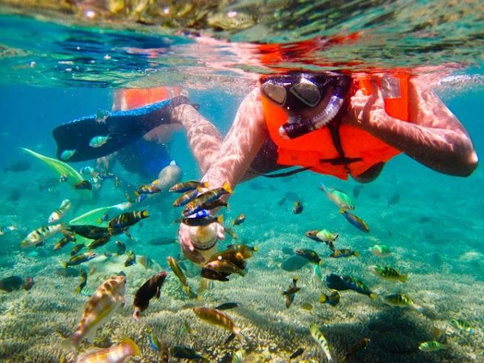 Wisata Snorkeling Gili Nanggu Gili Sudak dan Gili Kedis