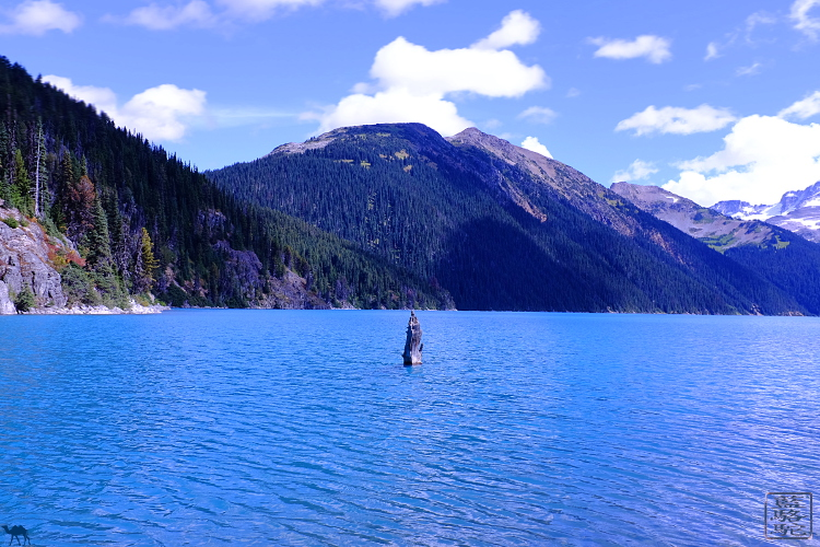 Le Chameau Bleu - garibaldi lake whistler Canada