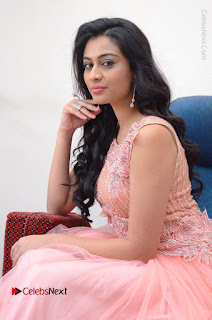 Actress Neha Hinge Stills in Pink Long Dress at Srivalli Teaser Launch  0085.JPG