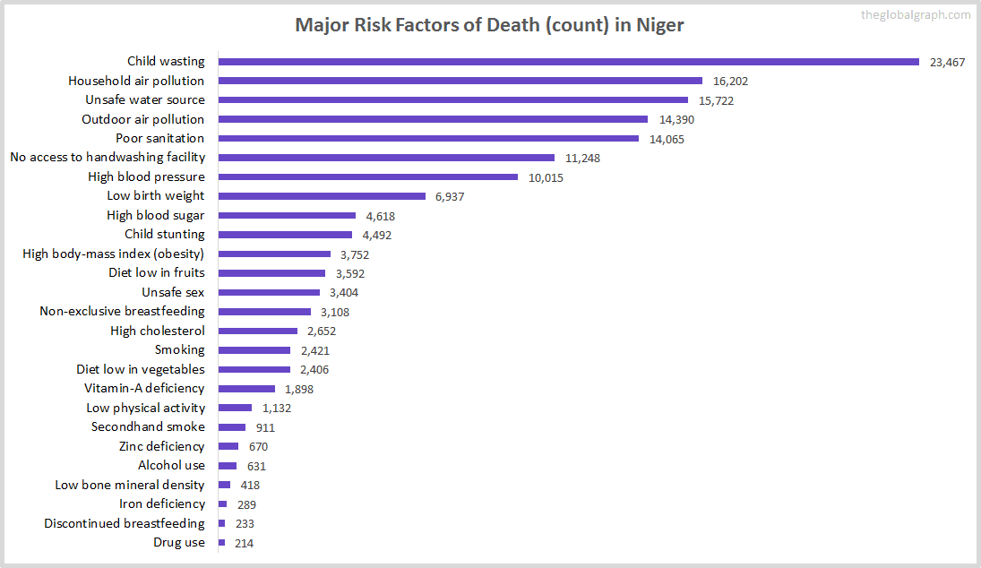 Major Cause of Deaths in Niger (and it's count)