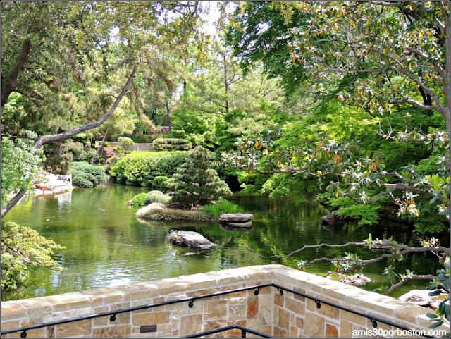 Vista de la zona de la  Cascada desde el Mikoshi Deck en el Fort Worth Japanese Garden