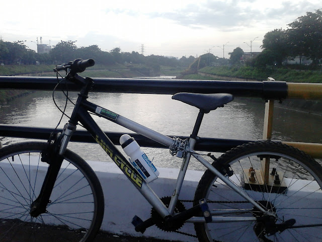 Gowes BKT
