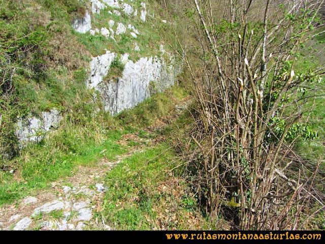 Ruta Retriñon: Cruce con el camino principal